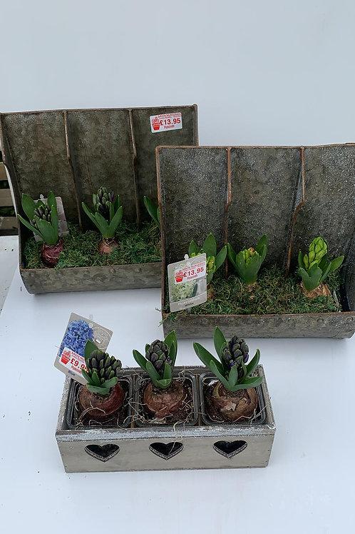 Tall planter