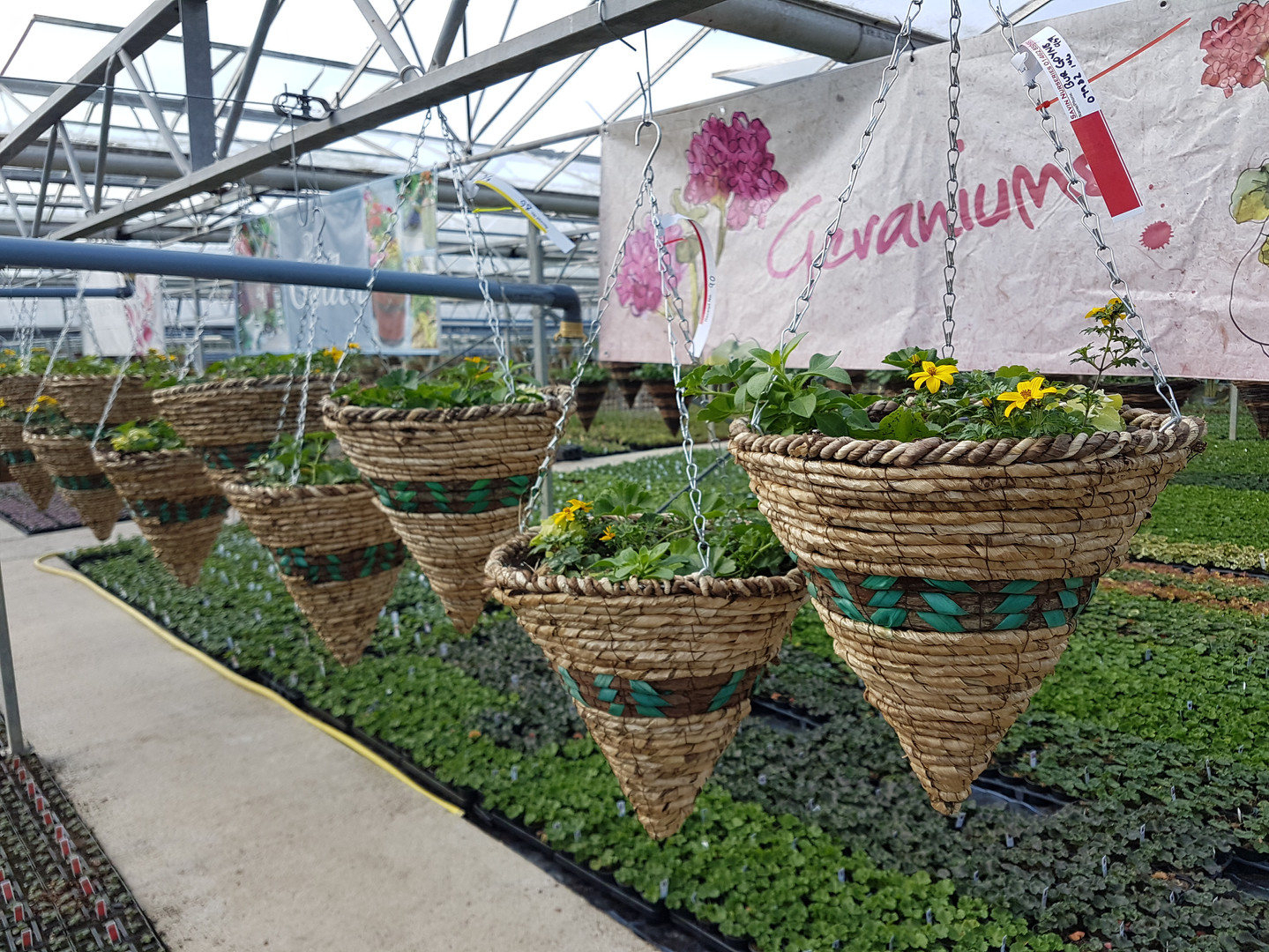 Summer Cone baskets