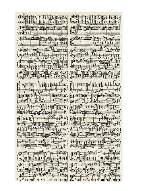 帯揚げ waltz 楽譜柄 セオアルファ