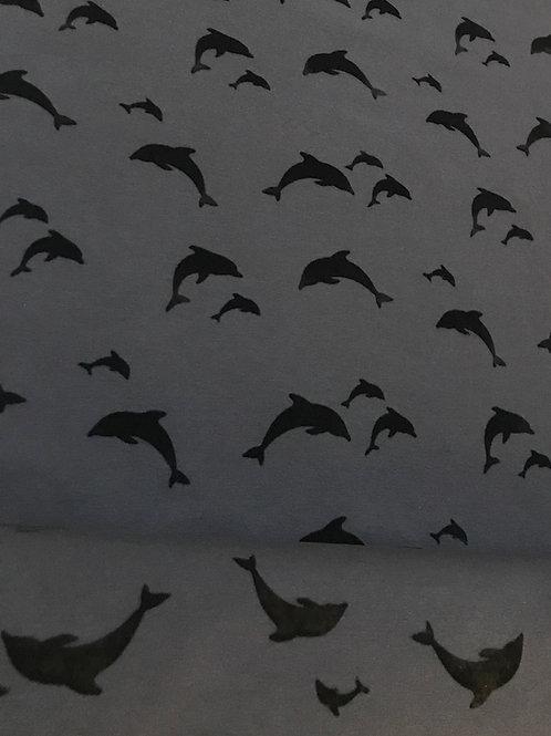 Ilja tricot dolfijnen in flex