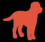 Animaux Séniors chien picto