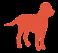 BarkAID Red Dog Image