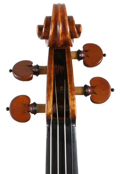 Aprendiz Música - braço de violino, viola ou cello