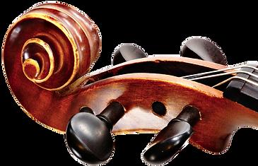 toronto wedding musicians,wedding quartet toronto,classical duo trio quartet toronto,classical quartet toronto