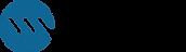 Welkin Logo color.png