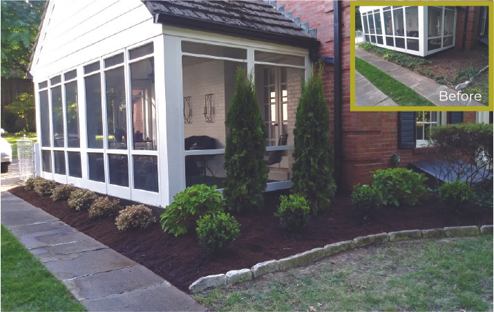 Screen Plants and Front Bed Landscaping