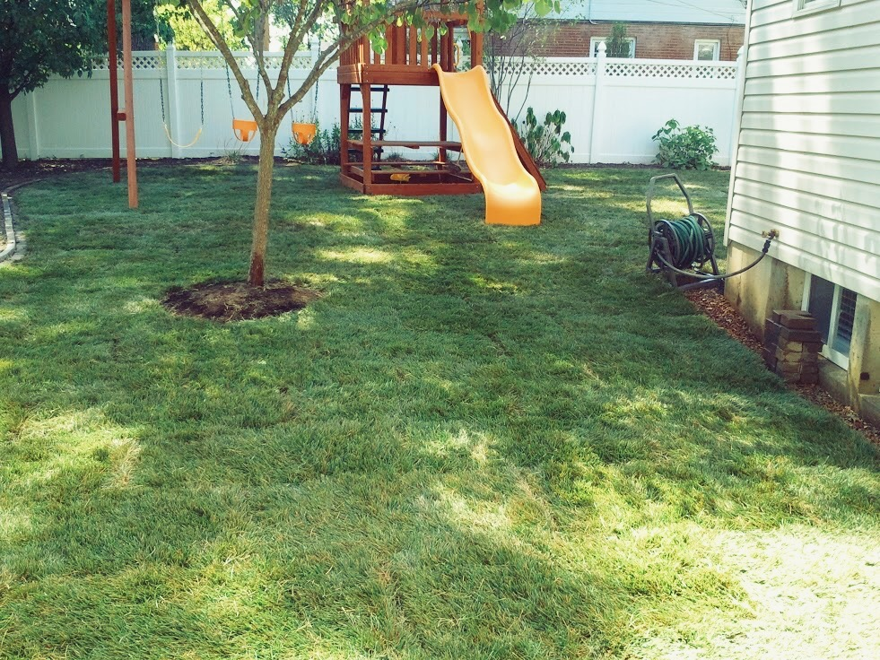 Fresh Start Outdoors Sod