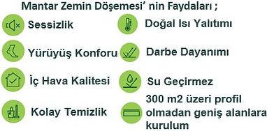 Mantar_Faydaları.JPG