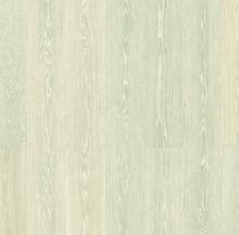 Prime Artic Oak 2.JPG