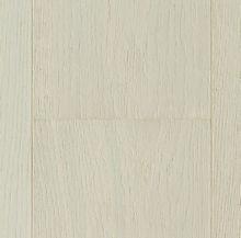 Oak Bellevue_2200x185_po.jpg