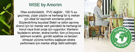 Amorim title web site.JPG