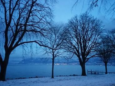 De volta à Minha Suíça