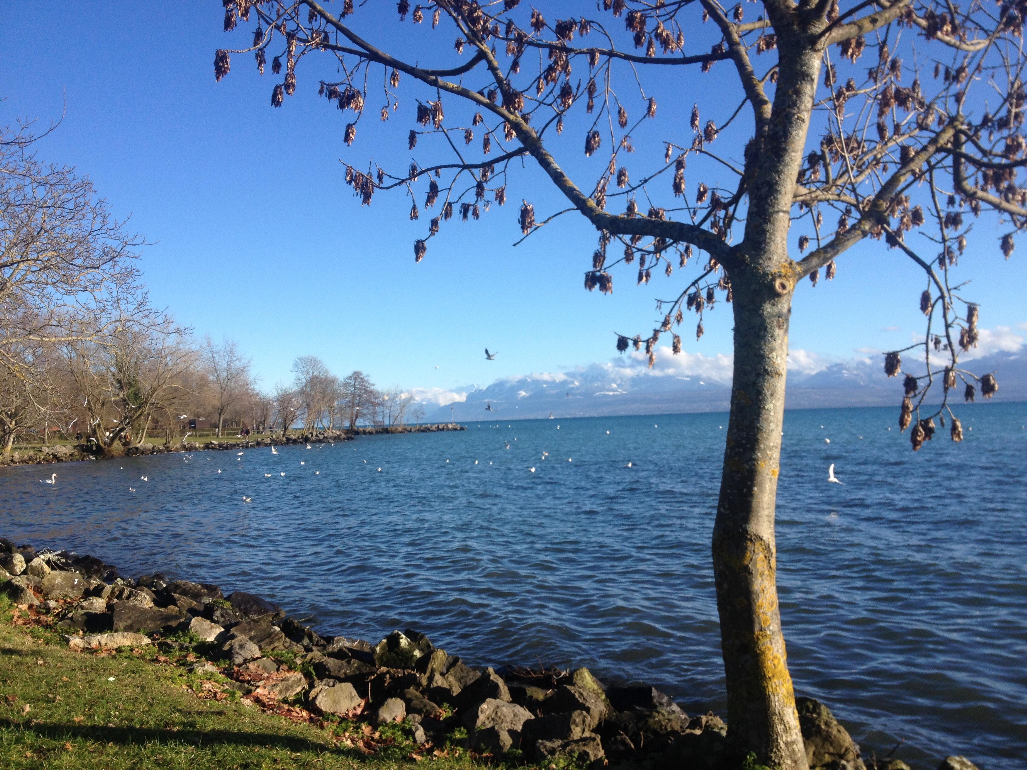 Lac Leman, Geneva Lake, Lago Genebra