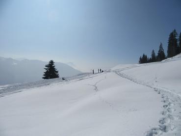 Snowshoes com guia de montanha