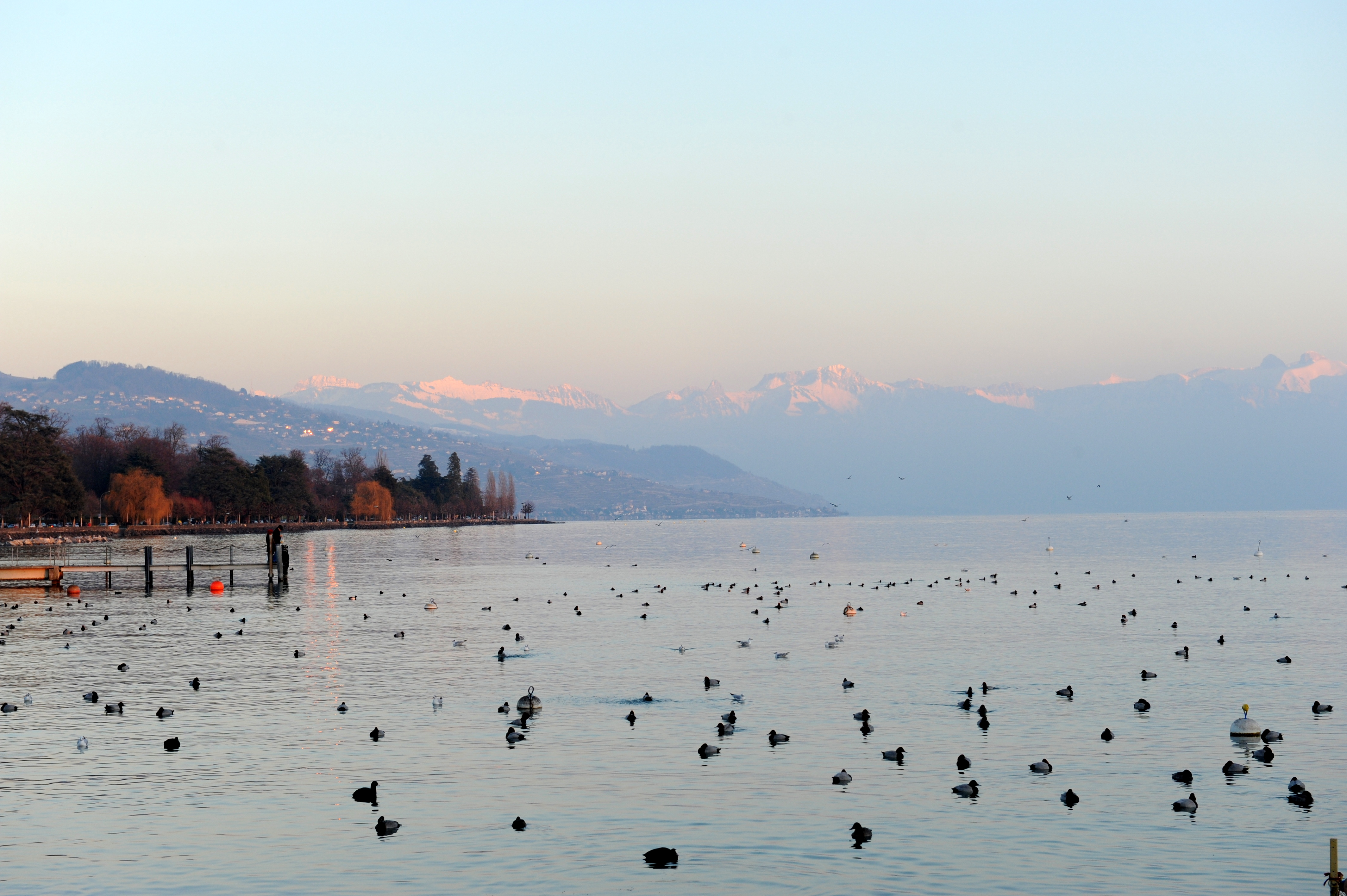 Lago Genebra, visto de Lausanne