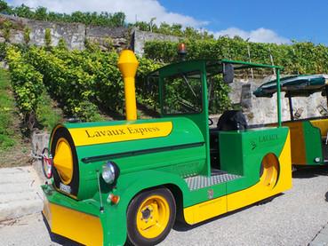 Os vinhedos de Lavaux, na Suíça