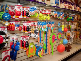 Store-10.jpg
