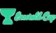 Emerald Cup Festival