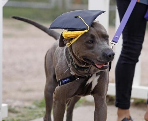 Remy Graduates