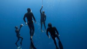 Kalamata, Grèce - Septembre 2013 / Championnats du Monde d'Apnée AIDA – Immersion Libre