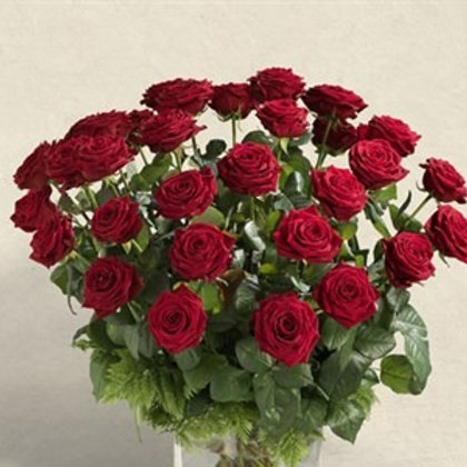 Bouquet di 36 Rose rosse  supra gambo medio e verde decorativo