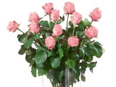 Bouquet 12 Rose  rosa gambo lungo senza verde