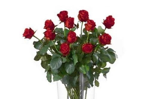 Bouquet di 12 Rose rosse gambo lungo senza verde decorativo