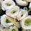 Thumbnail: Bouquet di 11 Ranuncoli con verde decorativo