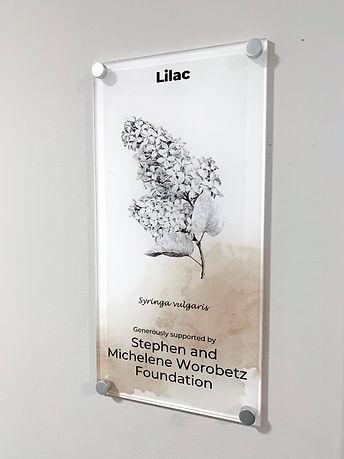 LILAC_1.jpg
