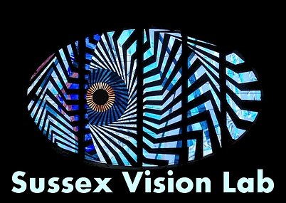 sussex vision lab logo with words.png