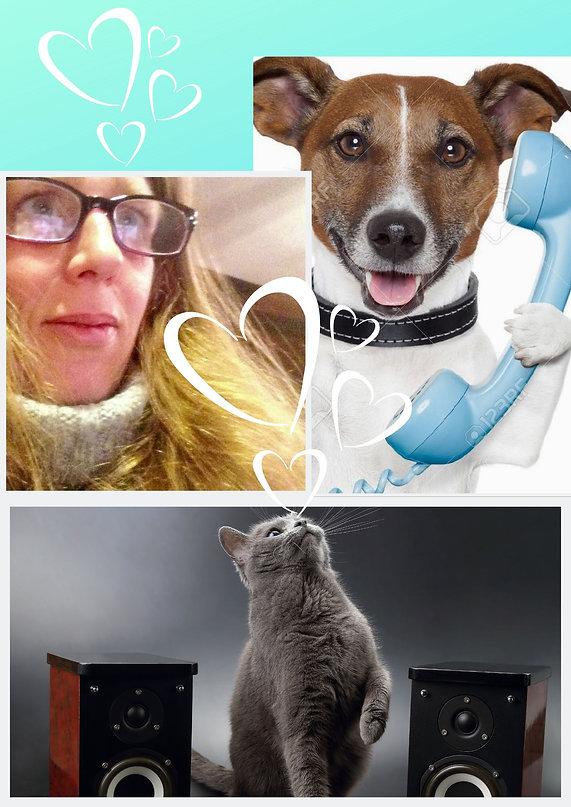 Communication animale à votre domicile,