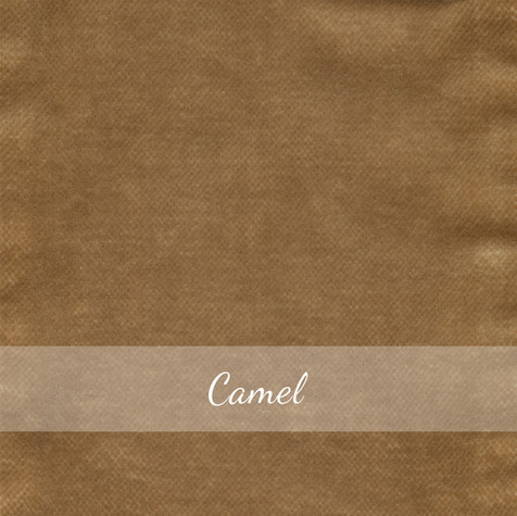 23_Samt_Camel.jpg