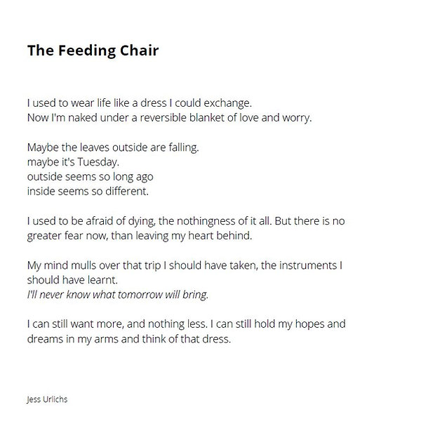 The Feeding Chair.JPG