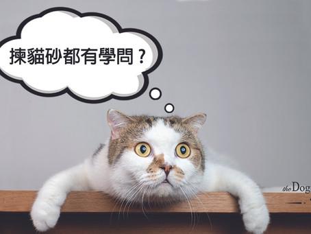 揀貓砂都有學問