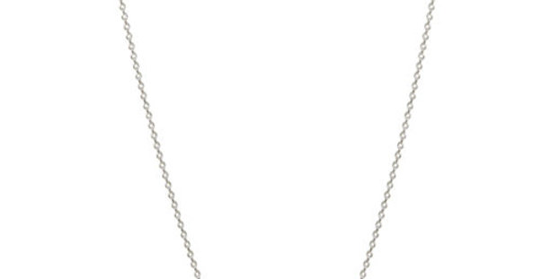 Long ROXY Disc Chain Silver