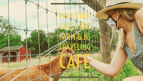 Princeton Lavender Farm & Traveling Coffee
