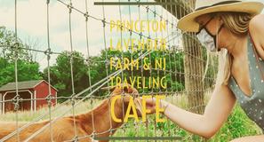 Princeton Lavender Farm & Traveling Coffee