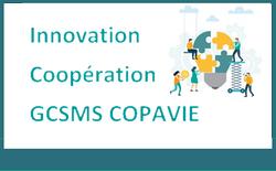 GSCSMS COPAVIE3