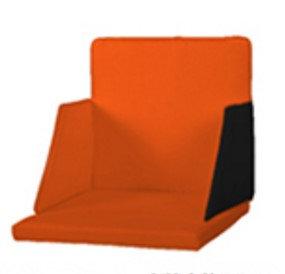 樂生堂輪椅專屬防震防坐墊連背墊側翼