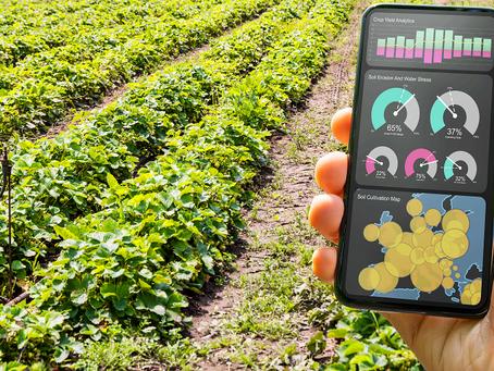 Fazenda conectada: dê um up de dados na lavoura.