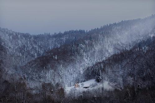 Desolate - Nick Rasmussen