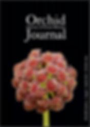 Journal33.JPG