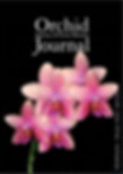 Journal11.JPG