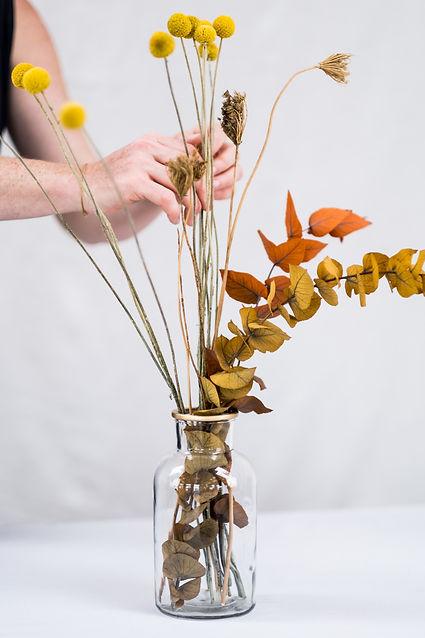 gelbe Trockenblumen