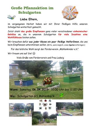 Pflanzaktion im Schulgarten der Grundschule Mühlenbeck
