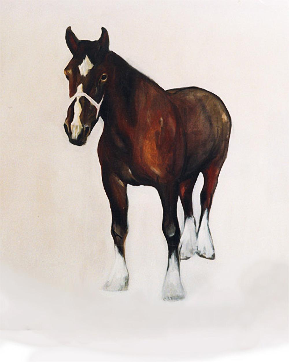 bruin_paard1000