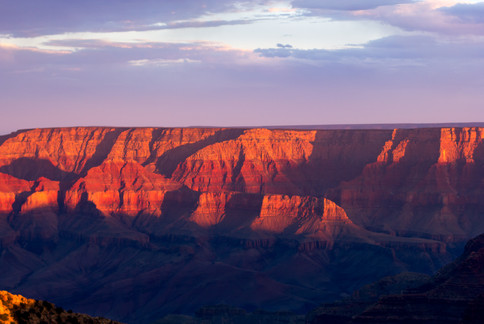 Grand Canyon Reds