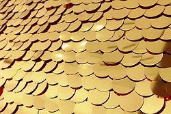 goldbackdrop2.jpg