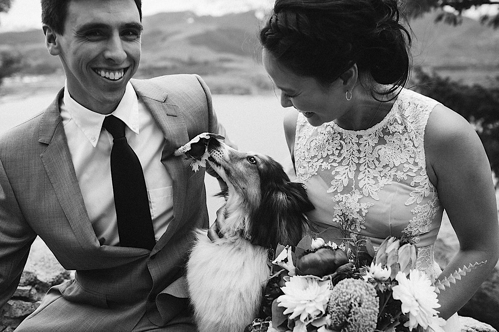 Bride and Groom Portraits with dog sapphire Point Breckenridge
