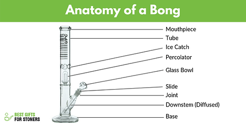 Anatomy-of-a-Bong-All-Bong-Parts-and-How